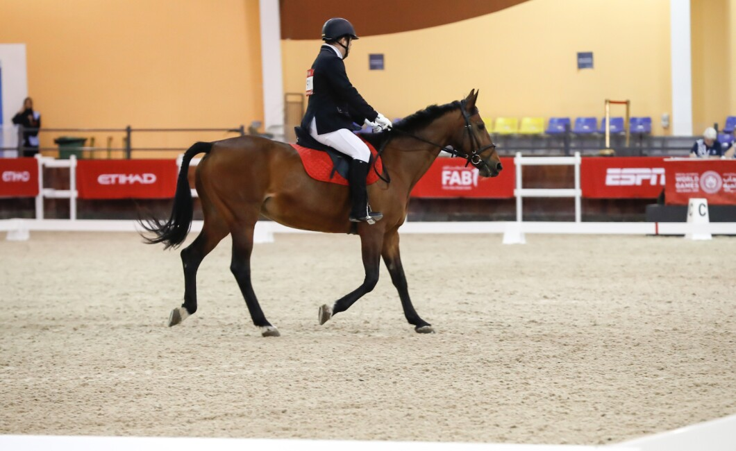Sports Competition - Equestrian