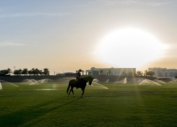 Al Forsan Sports Resort.jpg